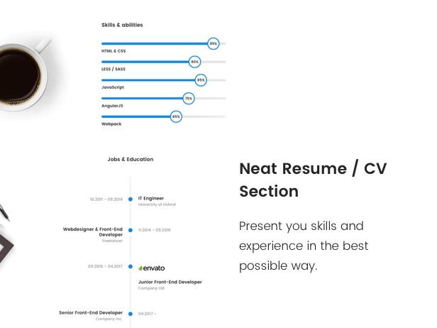 Neat Resume